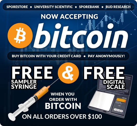 Now Accepting Bitcoin