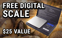 free-btc_scale